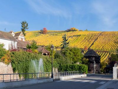 Photo for RIQUEWIHR - Large apartment in the vineyard!