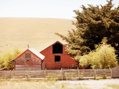 Photo for Charming Farmhouse on Organic Cattle Ranch