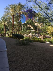 Short walk to the strip across the street from the Rio and Palm s