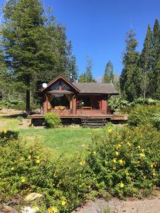 Photo for Cozy Forest Cabin - In Ensenada