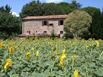 Photo for 3BR Cottage Vacation Rental in Cortona