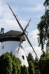 Photo for Windmill House landmark near the Baltic on a 1 ha meadow BREAKFAST INCLUDED