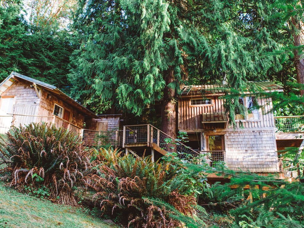 beachfront treehouse in the heart of puget vrbo