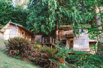 Beachfront Treehouse In The Heart Of Puget Sound Vashon Island