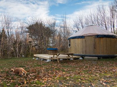 Photo for Cedar Yurt at Cabot Shores Wilderness Resort