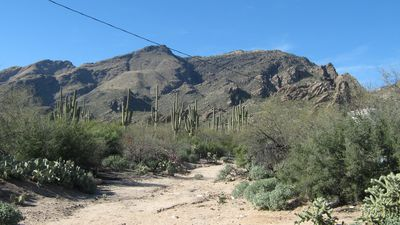 Photo for New! Luxury condo! Overlooking Catalina Mountains!