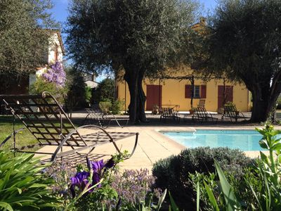 Photo for Near Cannes, authentic Bastide in the middle of olive trees with swimming pool