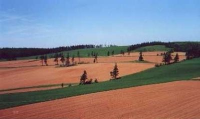 Photo for Top Of The Hill - Irishtown, Prince Edward Island