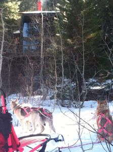 The Ponderosa Aspen Ark Main House and owners/host`s dogsled team.