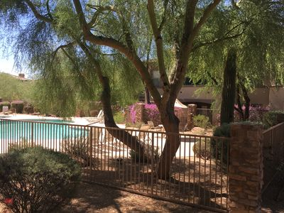 Photo for Beautiful North Scottsdale Condo, Peaceful and Private yet Close to Everything!