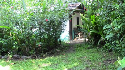 Photo for Quaint Little Cabina Located near all Services,  Nestled in a Jungle Environment
