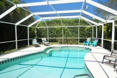 Electric Heated Pool and Privacy Hedge