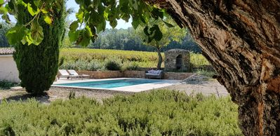 Photo for Rental from Sunday to Sunday: bastide with pool and wifi amidst vineyards