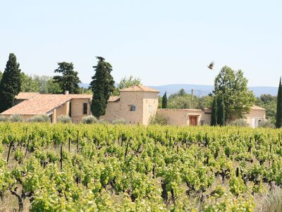 Photo for Cottage 6-8 people, swimming pool, in the heart of a vineyard, at the foot of Ventoux Provence