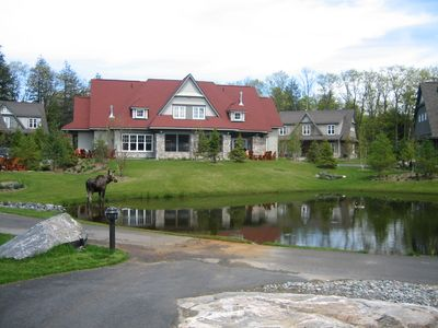 Photo for Luxury cottaging with lots of facilities & activities within a few minutes walk.