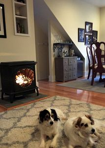 """Thermostatic controlled gas log """"fireplace"""".  Murphy and Lucy not included."""