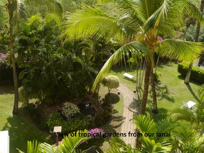 Photo for Ocean, mountain, pool views. Best location at The Banyan. Across from Kam2 beach