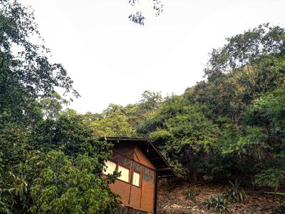 Photo for Treehouse in the mountains