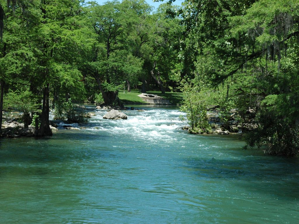 Elliot 39 s nest trout fishing with guide on the guadalupe for Guadalupe river trout fishing