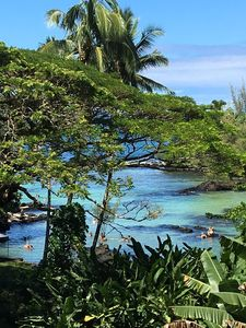 Photo for 1BR Condo Vacation Rental in Hilo, Hawaii