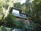 3BR Cabin Vacation Rental in Guerneville, California