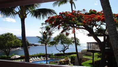 Photo for Oceanfront Condo on a Snorkel Cove!
