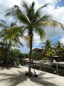 Photo for Tranquility in the Keys