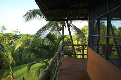 View above jungle canopy to beach.