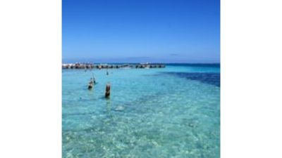 Photo for Comfortable apartment in Puerto Morelos / # 2