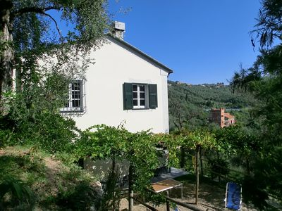 Photo for Lovingly Restored Country House in Olive Grove with Vineyard 10 minutes from sea