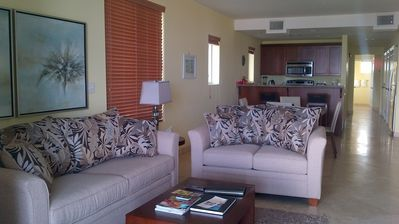 Living Room, new couch and love seat