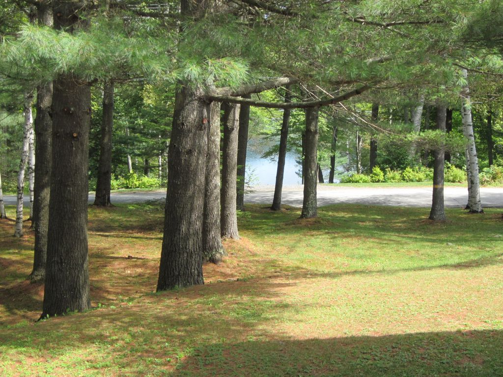stinson lake View detailed information and reviews for 252 stinson lake rd in rumney, new hampshire and get driving directions with road conditions and live traffic updates along the way.