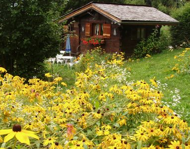 Photo for Charming little chalet with magnificent view of the Mont-Blanc range