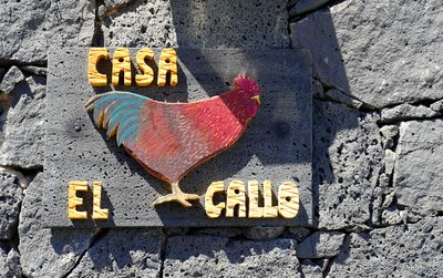 Photo for Casa el Gallo Rural house located in the village of Muñique, Teguise