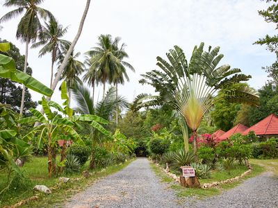 Photo for 45 sqm holiday home, quiet resort in the coconut grove on the edge of the mountains