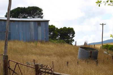 Woolshed in Late Summer