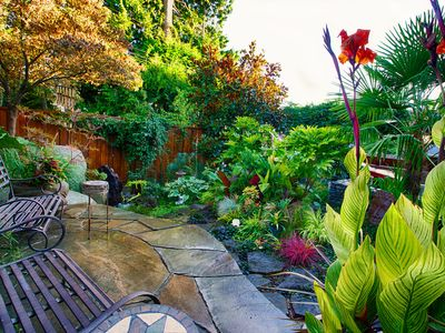 Tropical garden with water feature and flagstone deck