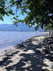 Photo for Delicious home! Foot on the sand! Beautiful view to Ilhabela!10 min from the beach street!