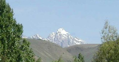 Majestic Moosetree, Tetons Views, in Town, True Jh Experience
