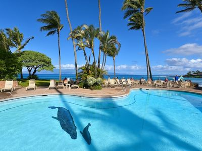 Photo for Napili Shores C116 by RedAwning