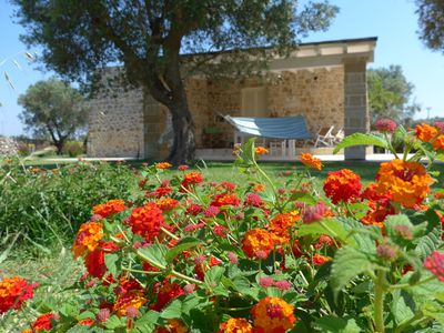 Photo for DIMORA JACARANDA, Salento, relax and charm a few minutes from the sea of ​​Gallipoli
