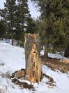 On Angel's Wings One & Two: Driveway Entrance Marker WELCOMES LG & SM GROUPS! :)