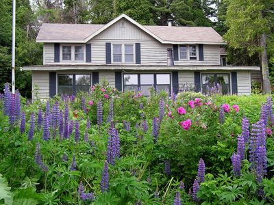 Lupine Lodge on Lake Superior -- the lupine flowers bloom from June-July