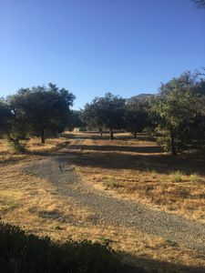 JAMUL HORSE HAVEN! HORSES WELCOME WITH GUESTS!