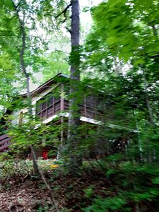 "Photo for Welcome to the Owls Nest Cabin NC; your ""home-away-from-home""  retreat!"