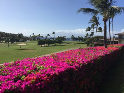 Photo for 5 STAR!-Largest 2bd/2ba condo (check sq ft!) Super Ocean & Golf Course Views