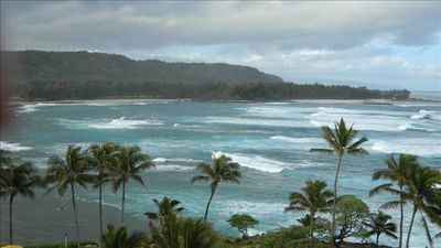 Walking Distance to The Cove at Turtle Bay