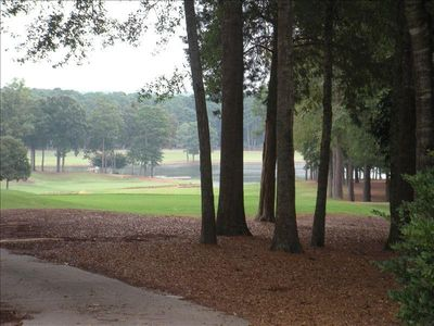 Photo for Golf Cottage at Great Waters/Reynolds Plantation