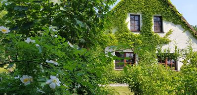 Photo for Nature & Sea: Apartment in an idyllic country house