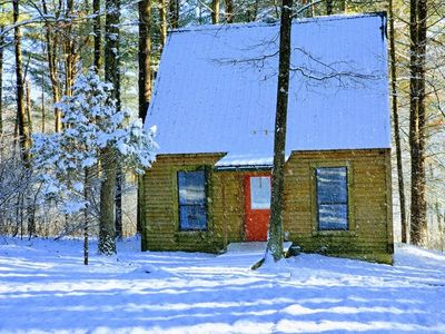 Photo for Evergreen Hideaway is a cabin nestled under tall pines.
